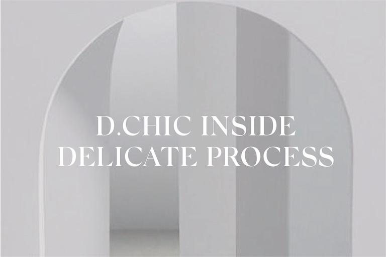 dchic-inside-delicate-process-3339388